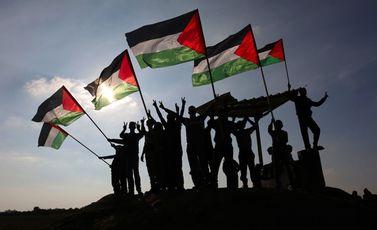 فلسطين علم فلسطين- جيتي